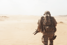 Army Study To Assess Risk and Resilience in Servicemembers (STARRS) Longitudinal Study
